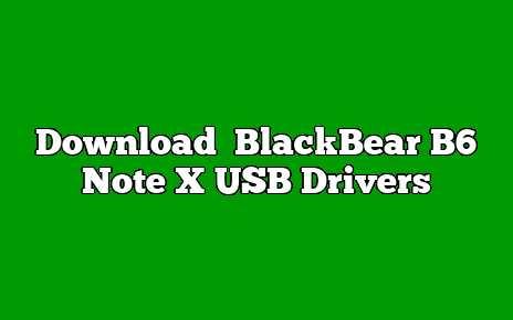BlackBear B6 Note X