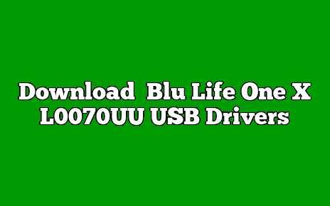 Blu Life One X L0070UU