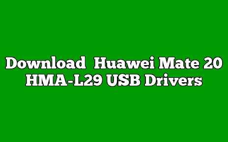 Huawei Mate 20 HMA-L29