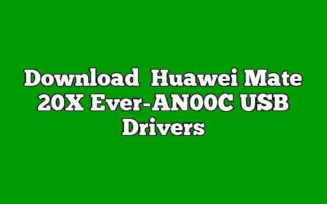Huawei Mate 20X Ever-AN00C