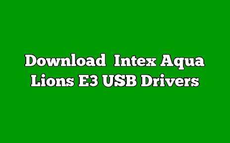 Intex Aqua Lions E3