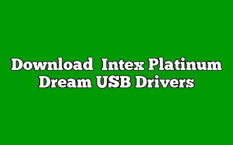 Intex Platinum Dream