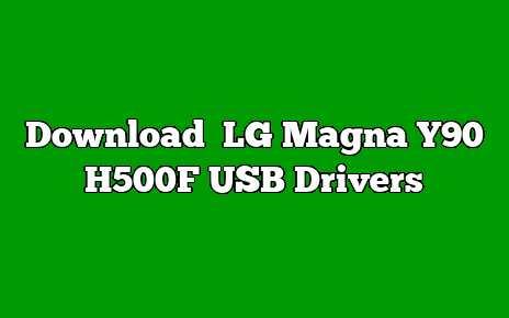 LG Magna Y90 H500F