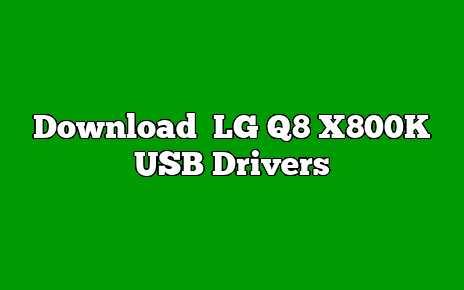 LG Q8 X800K
