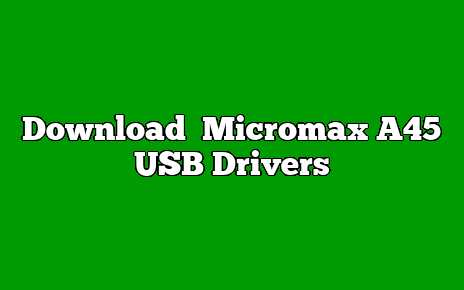 Micromax A45