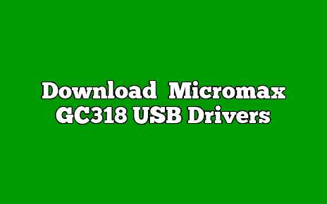 Micromax GC318