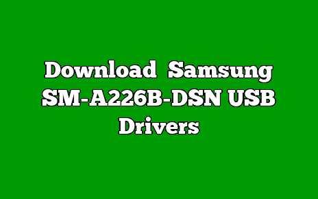 Samsung SM-A226B-DSN