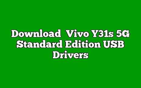 Vivo Y31s 5G Standard Edition