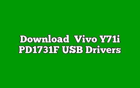 Vivo Y71i PD1731F