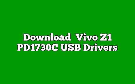 Vivo Z1 PD1730C