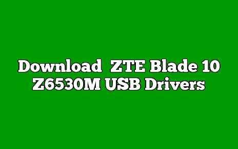 ZTE Blade 10 Z6530M