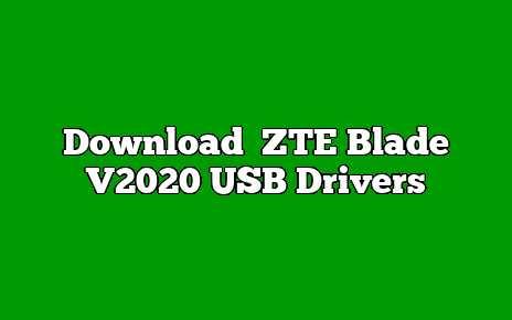 ZTE Blade V2020