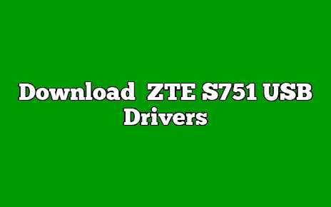 ZTE S751